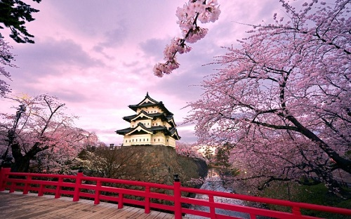 Cheapest express delivery service to Japan